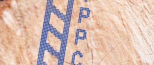 Znakowanie drewna i powierzchni drewnopodobnych. - sol4