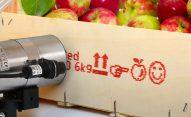 EBS-230 - DOD EBS 230 wydruk skrzynka jablka dsc6199 EBS-230